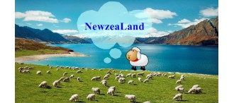 BW Amazing New Zealand Tour 7 Days 0