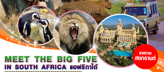 MEET THE BIG FIVE IN SOUTH AFRICA 8D5N 0
